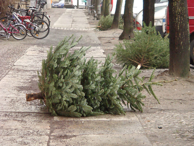 Christmas trees on a street in Berlin