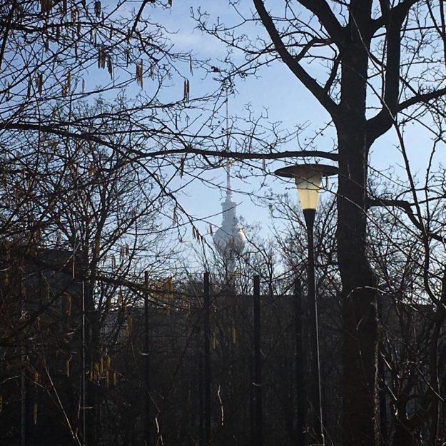 TV-Tower / Street Lamp / Berlin