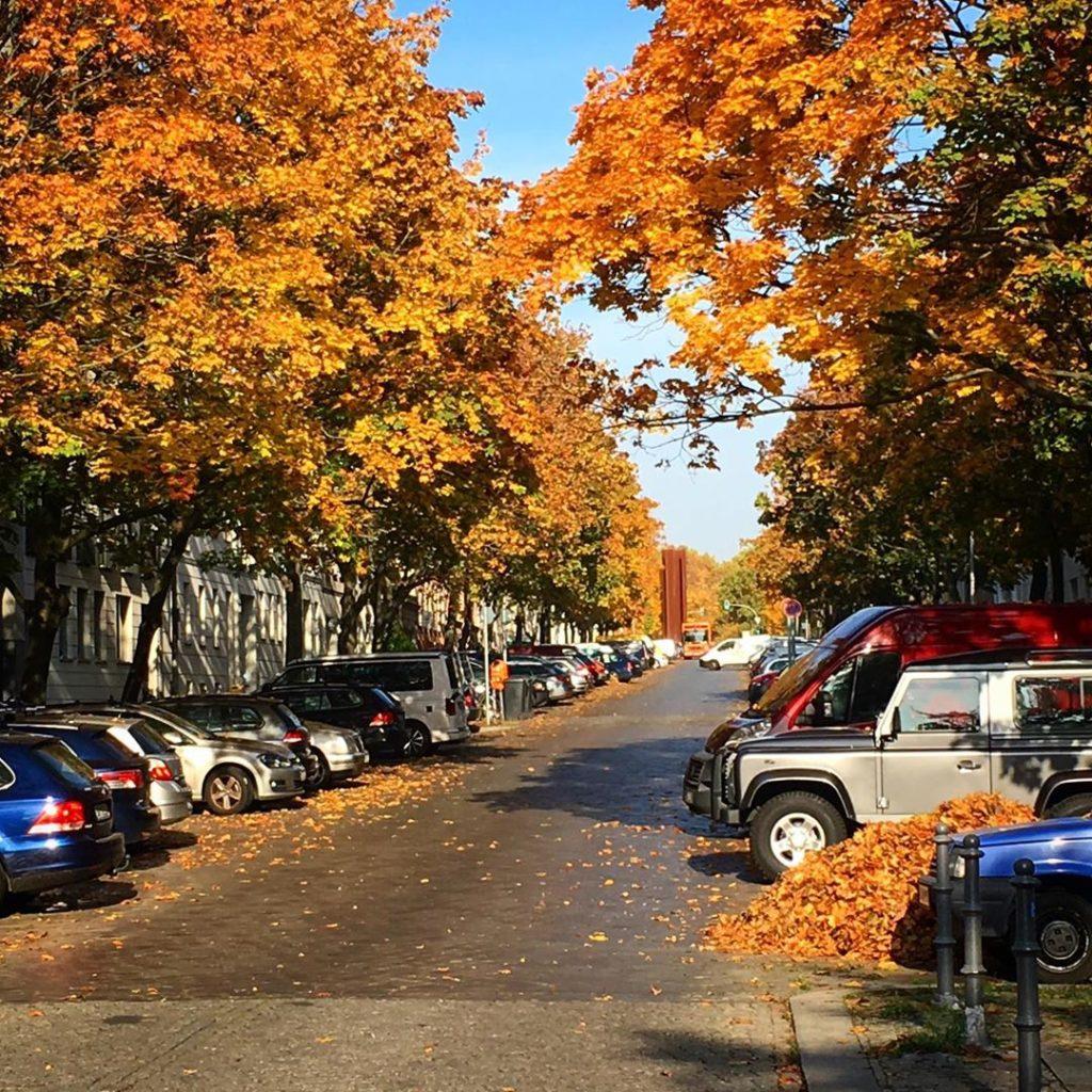 Herbst Strelitzer Strasse Berlin